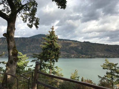 The Columbia River, from our motel