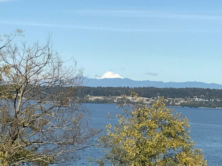 Our view, from near to far: Saratoga Passage, Camano island, the mainland, Mount Baker.
