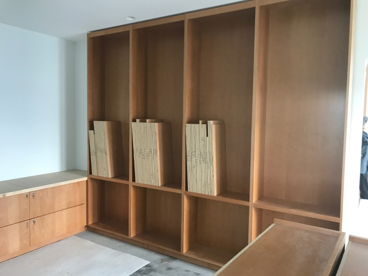 Bookshelves in the study