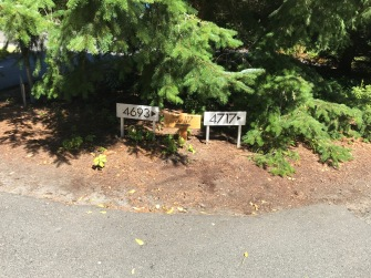 ... and a directional sign in the driveway (also right).