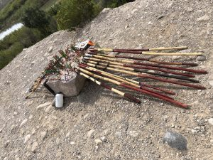 Walking sticks for sale